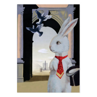 White Rabbit in  Paris - Two Sided Pack Of Chubby Business Cards