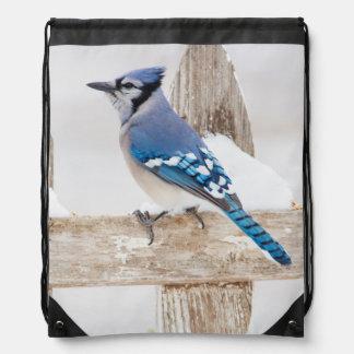 Wichita County, Texas. Blue Jay 3 Drawstring Backpack