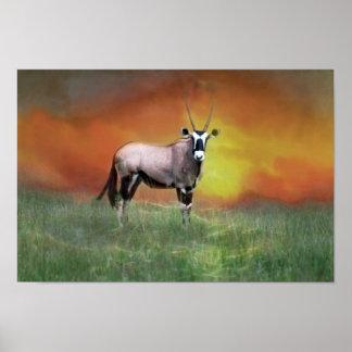 Wild deer at sunset poster