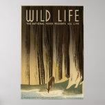 Wild Life Poster
