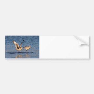 Willet Romance Bumper Sticker