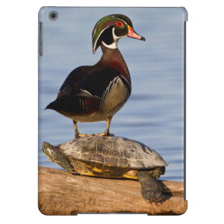 Wood Duck male standing on Red-eared Slider iPad Air Cover