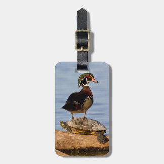Wood Duck male standing on Red-eared Slider Tags For Bags