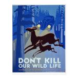 WPA - Wildlife Postcard