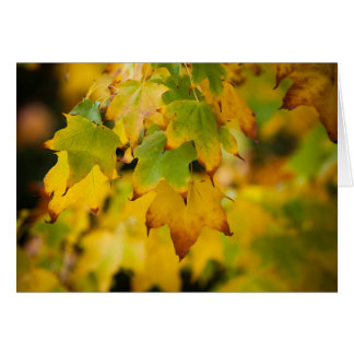 Yellow Autumn Postcard Greeting Card