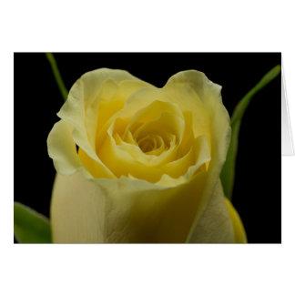 Yellow Rose Bud Greeting Card