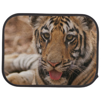 Young one of Royal Bengal Tiger Floor Mat