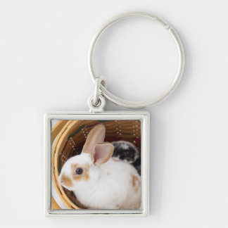 Young Rex rabbits in Easter basket Silver-Colored Square Key Ring